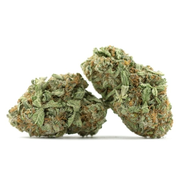 Durban Poison, Buy Durban Poison online