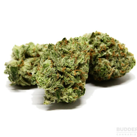 Buy Master Kush online, Master Kush online reviews, where to buy Master Kush