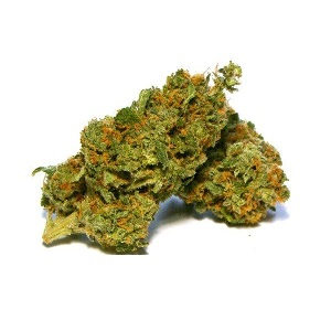 Afghan Kush, Buy Afghan Kush online, where to buy Afghan Kush online