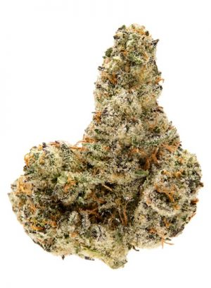 Vanilla Kush, Buy Vanilla Kush online, Vanilla Kush for sale