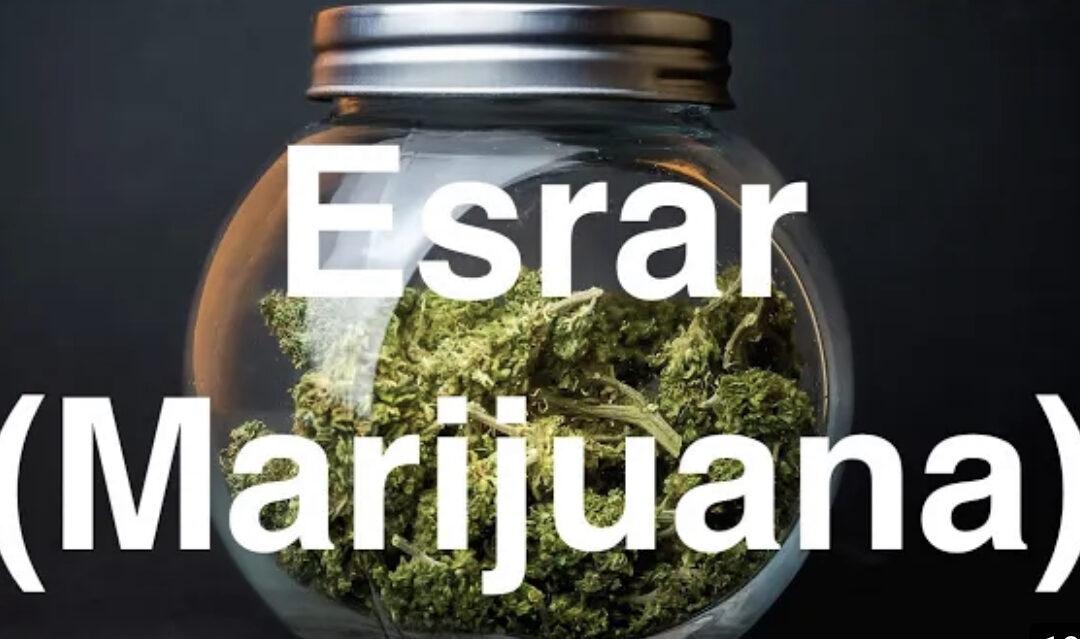 buy weed in Turkey